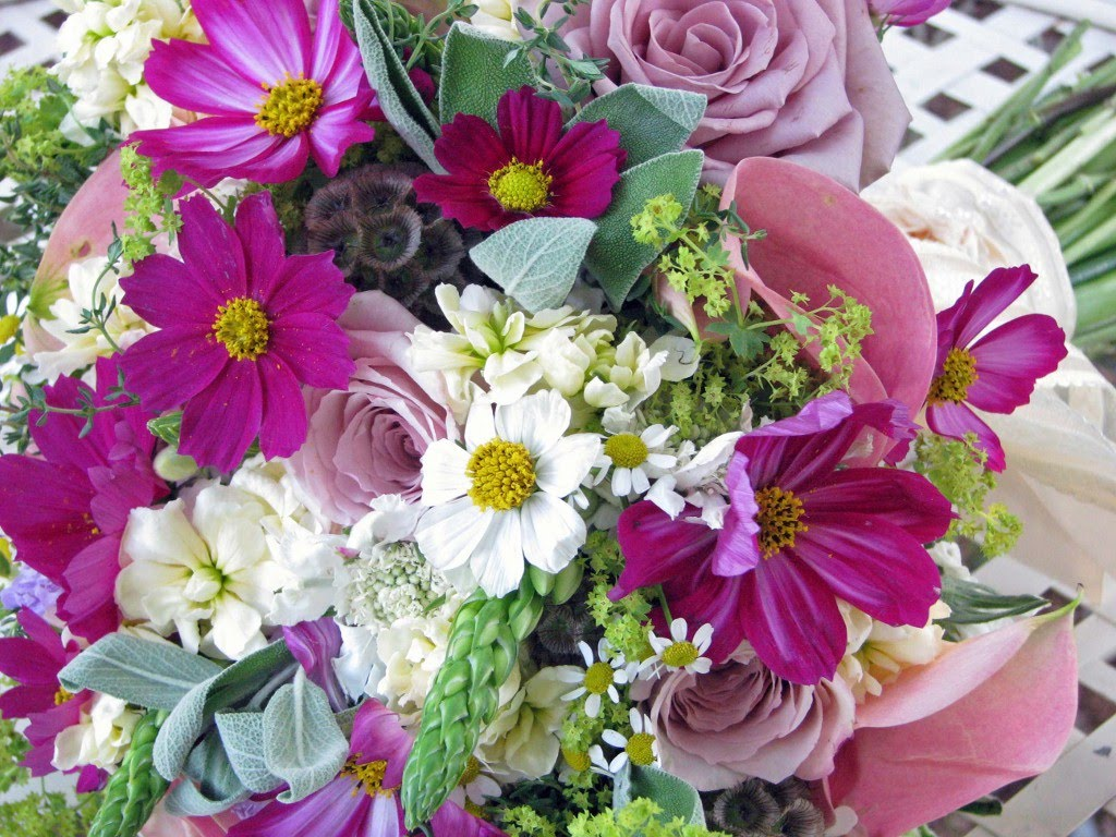 Last Bing Queries & Pictures for Cosmos Flower Bouquet