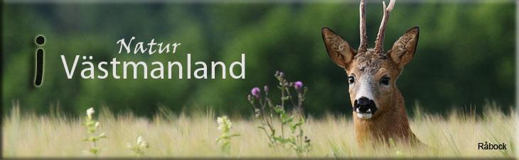 Natur i Västmanland