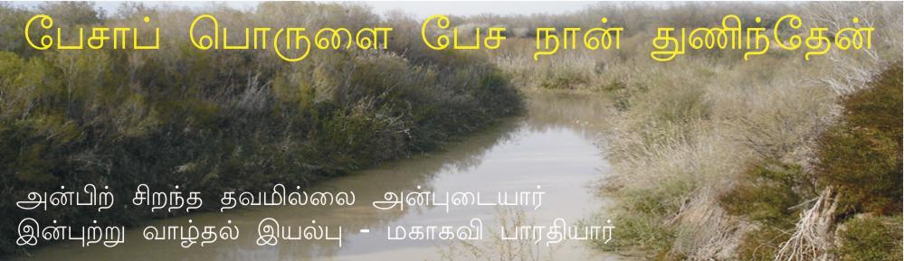 பேசாப் பொருளைப் பேச நான் துணிந்தேன்