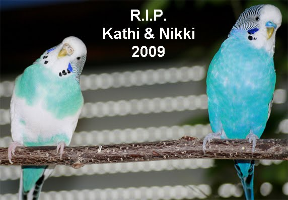 Kathi and Nikki