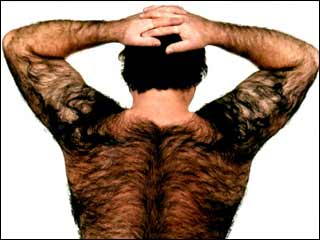 blog Hairy back