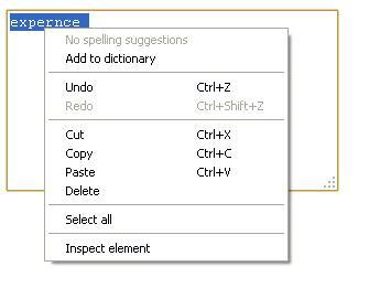Google Chrome spell checker