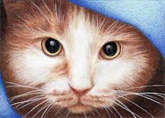 """Hide & Peek Cat"" ACEO - SOLD"