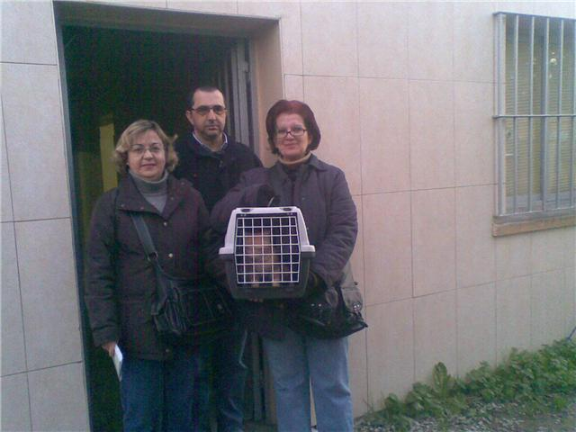 Adopcion diciembre 2008!