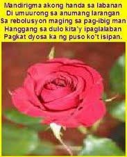 Rosas para kay Miss M