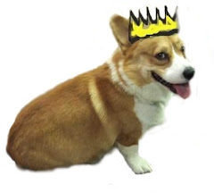 E-Learning Corgi (Queen) (call me Gizmo)