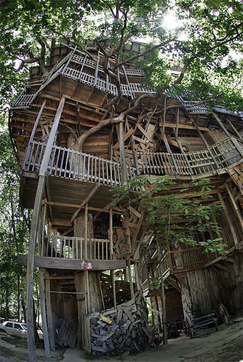 The Largest Tree House In The World