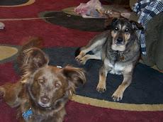 Zoe & Hali