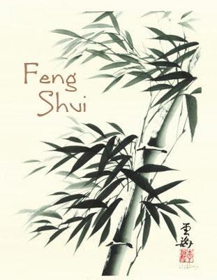 4udecor design de interiores consultoria feng shui na for Feng shui para todos