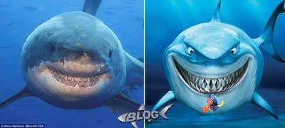 Tiburones más famosos que existen.