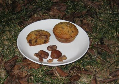 Maroni-Baileys-Muffins