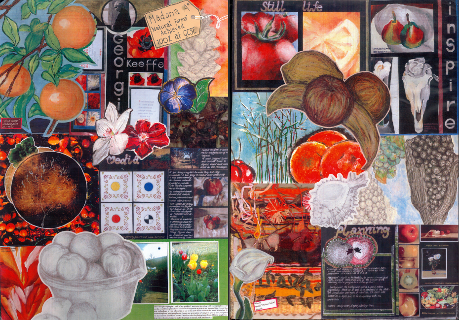Art Gcse Coursework Natural Forms Of Birth - image 2