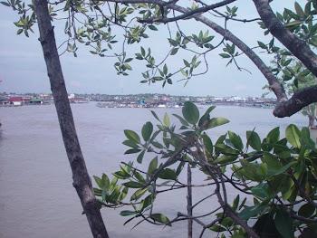 Kukup View