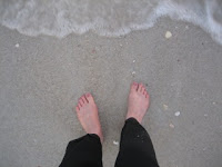 Annette's Toes in the Casey Key Sand