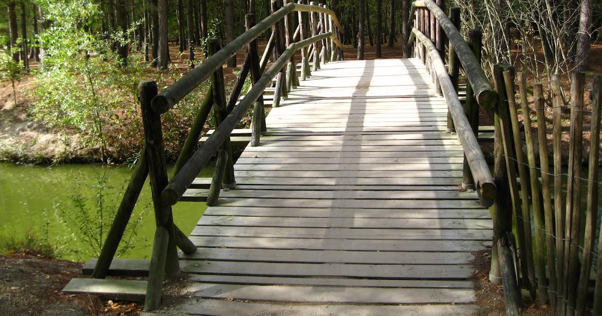 la nature en photos petit pont de bois. Black Bedroom Furniture Sets. Home Design Ideas