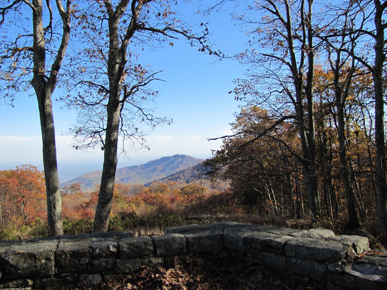 Skyline Drive in Autumn