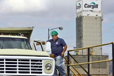 Cargill'sEarnings Fall