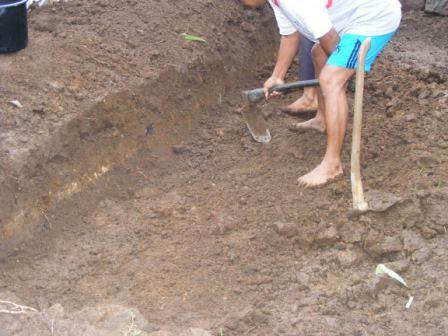 Tanah digali sedalam 50cm