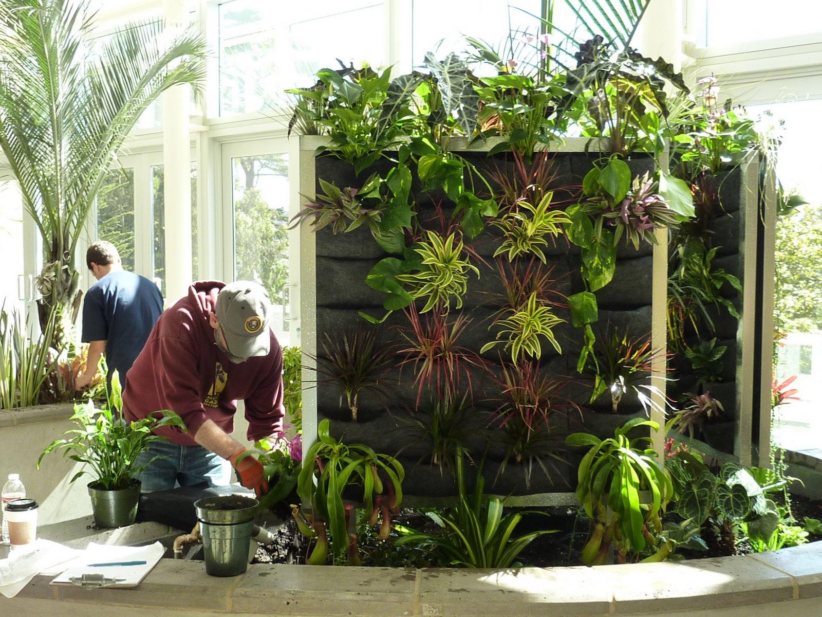 Vertical Gardening Kits images