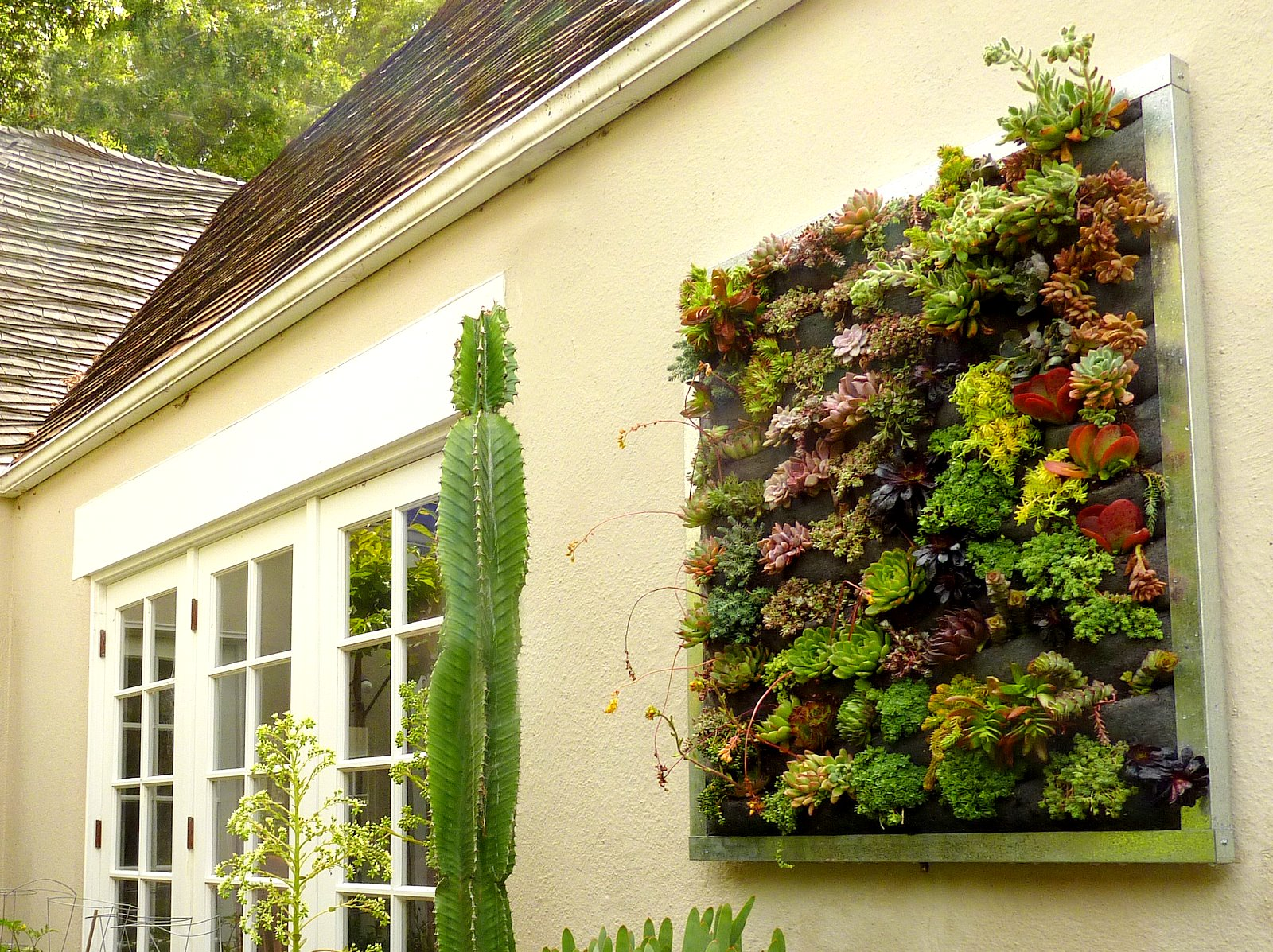 Plants On Walls vertical garden systems: Gilman Succulent Garden: A