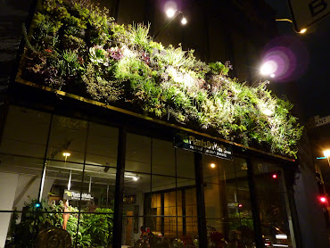 #2 Vertical Garden Design Ideas