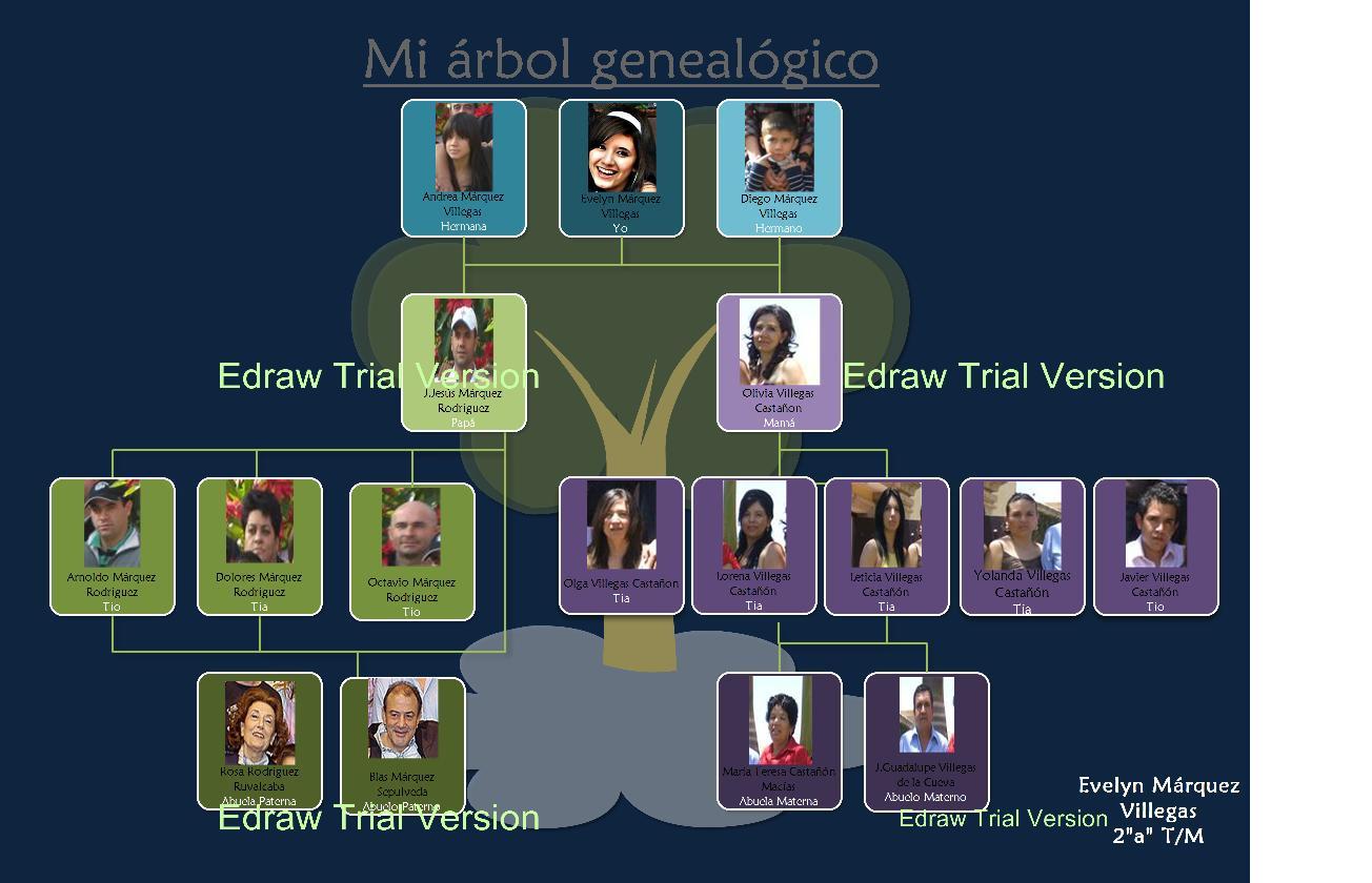 Plantilla Arbol Genealogico Word – I Started