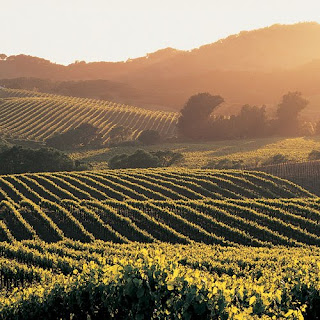 how to become a sommelier in california