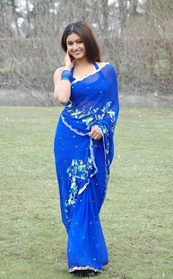 Poonam Bajwa in Blue Saree  http://designersareeimages.blogspot.com/