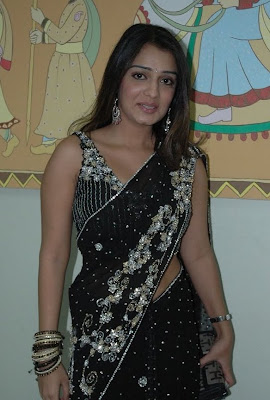 South Indian Actress in Black Saree Photos Nikita