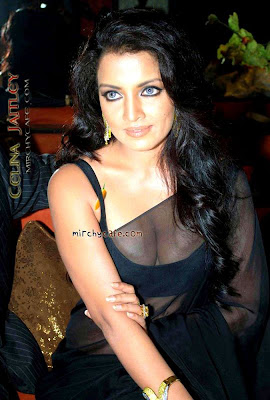 Celina Jaitley in black transparent saree