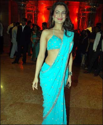 Hot Amisha Patel in Hot Light Blue Saree