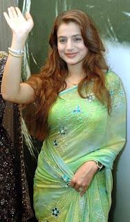 Bollywood Actress Amisha Patel in Saree Photo Gallery