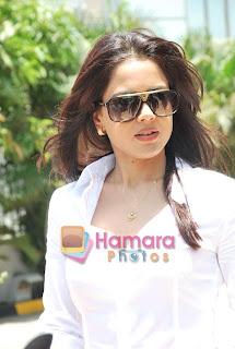 Telugu Actress Sameera Reddy in Formal Wear