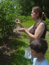 Josh and I blueberry picking 2009