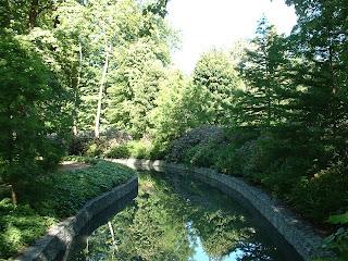 rivière du par bordée de végétation