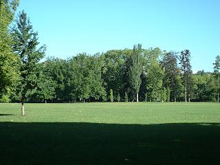 Les pelouses du parc de la tête d'or son vides