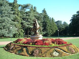 Le centaure au milieu d'un massif de fleurs