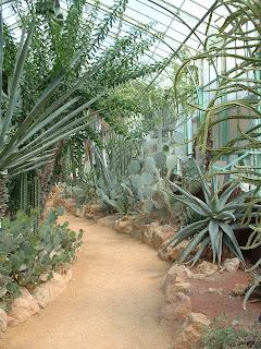 Allée de la serre de Madagascar