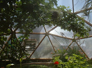 """Growing Dome"" Greenhouses"