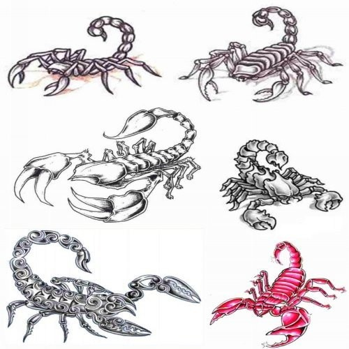 Arm Scorpion Tribal Tattoo