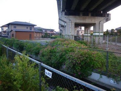 東北新幹線の下