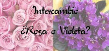 Inter rosa-violeta