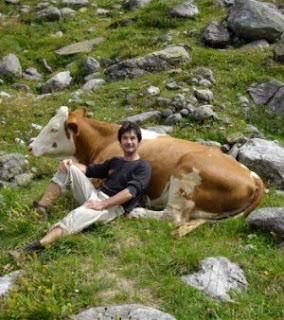 Vaca é executada após seduzir rapaz de 18 anos