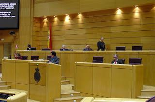 Félix Lavilla en la intervención Pleno Senado PGE 2010