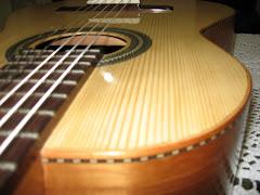 Meu primeiro violão