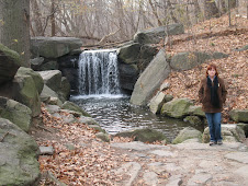 Yes a waterfall in Central Park!