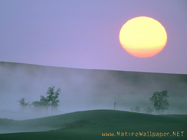 Nature wallpaper misty sunrise