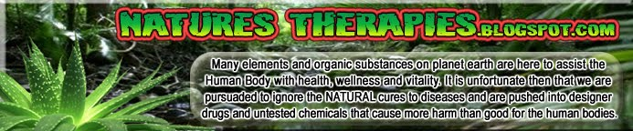 Healing the Human Body the Natural Way