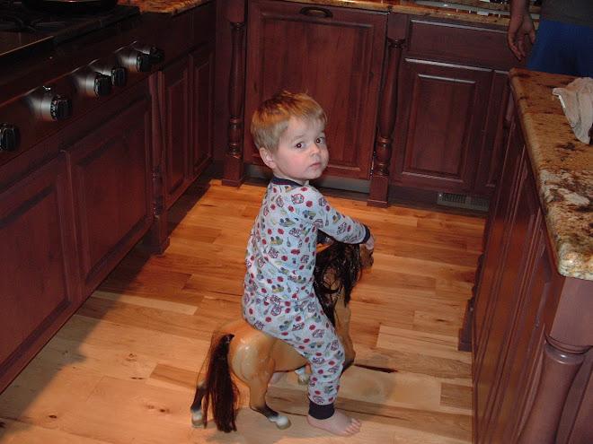 """Jagger riding toy """"Tonka"""""""