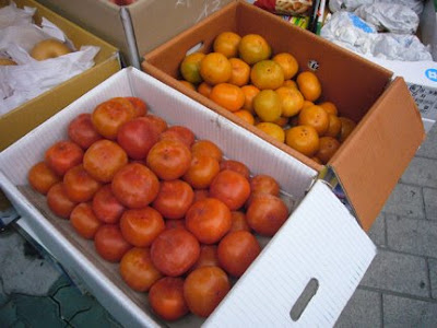 Persimmons, from http://www.maryeats.com